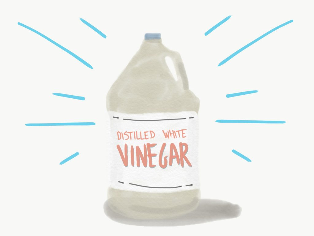 illustration of distilled white vinegar