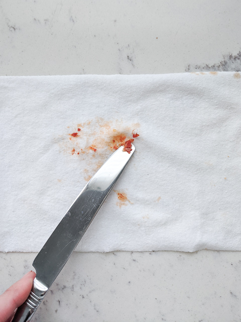 toddler clothes stain remover pizza